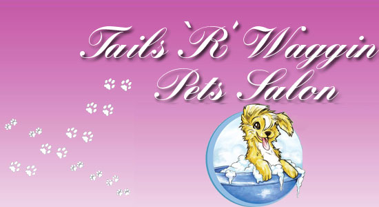 Tails r waggin dog grooming pet salon professional dog for A wagging tail pet salon
